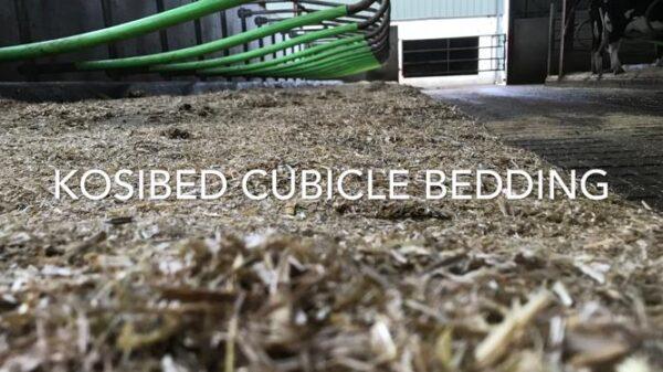 Cubicle Bedding
