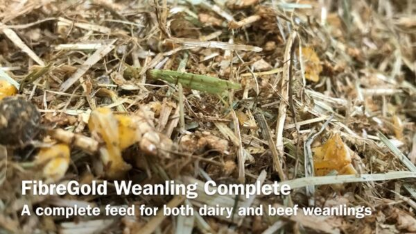 Weanling Complete